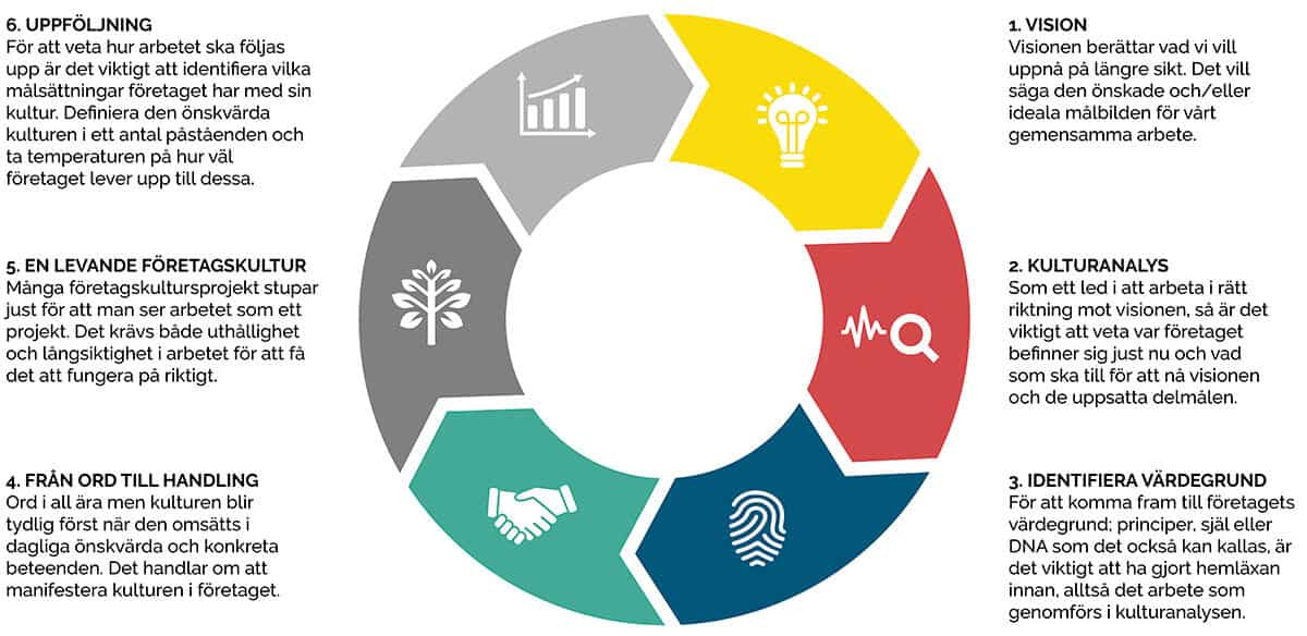 Företagskultur, 6 steg